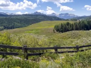 Meadow and mountains in Gunnison County